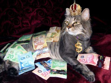 【自営業】事業者支援金(市)20万円申請から10日で入金。持続化給付金(国)赤枠消えた!【個人事業主】