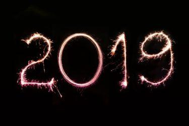 【2019総まとめ】今年1年の利益はどうなった?トラリピ(自動・手動)&メキシコペソ積立の結果!